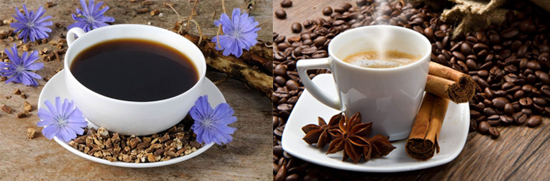 What is healthier than coffee or chicory? Can coffee be replaced with chicory?